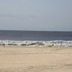 Surf 25